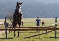 mladá nezkušená Sarah skáče půl metru nad a nezapírá svůj talent ;o)